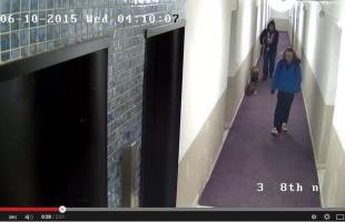 صحنه ای از ویدئویی که  پلیس تورنتو از دو مظنون به قتل سینا پارسی منتشر کرده است.