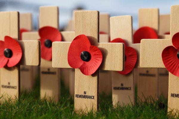 گل سرخی که به عنوان سمبل سربازان از دست رفته و بازماندگان نظامی بر سینه مردان و زنان می بینید سابقه ای قدیمی تر از دو جنگ جهانی دارد.
