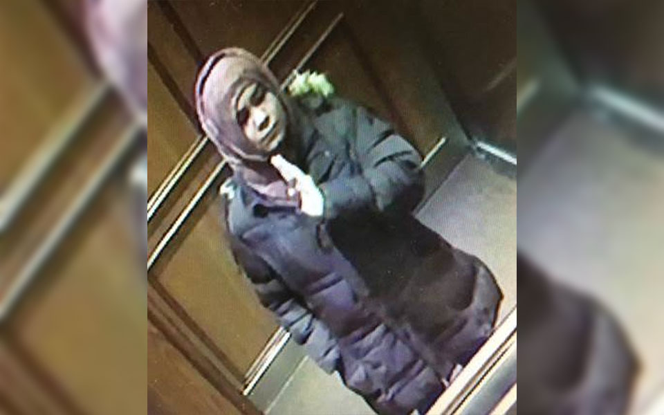 Missing girl Madina Soltani, 15