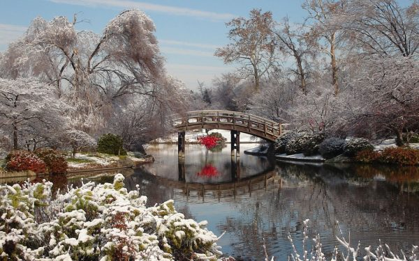 زمستان انتاریو را فراموش کرده است