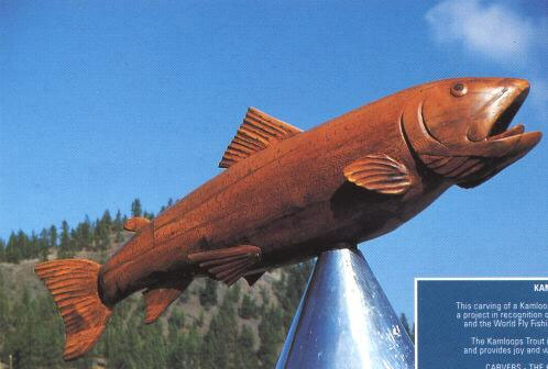 Kamloops Trout