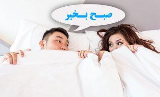 زبان فارسی از رتبه 12 به رتبه دهم زبانهای «مهاجری» صعود کرده است.