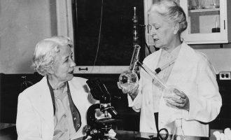 هیزن (چپ) و بران (راست) دو مکتشف آنتی بیوتیک ضد قارچهای پوستی
