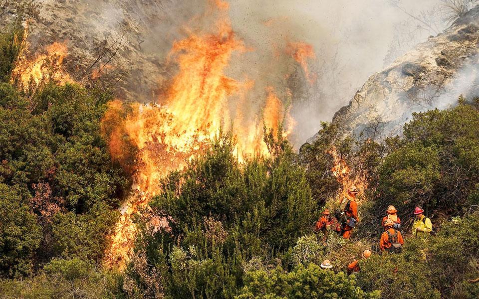 آتش سوزی کالیفرنیا پر خسارت ترین آتش سوزی در تاریخ می باشد که دهها میلیارد دلار خسارت به جا گذاشته.