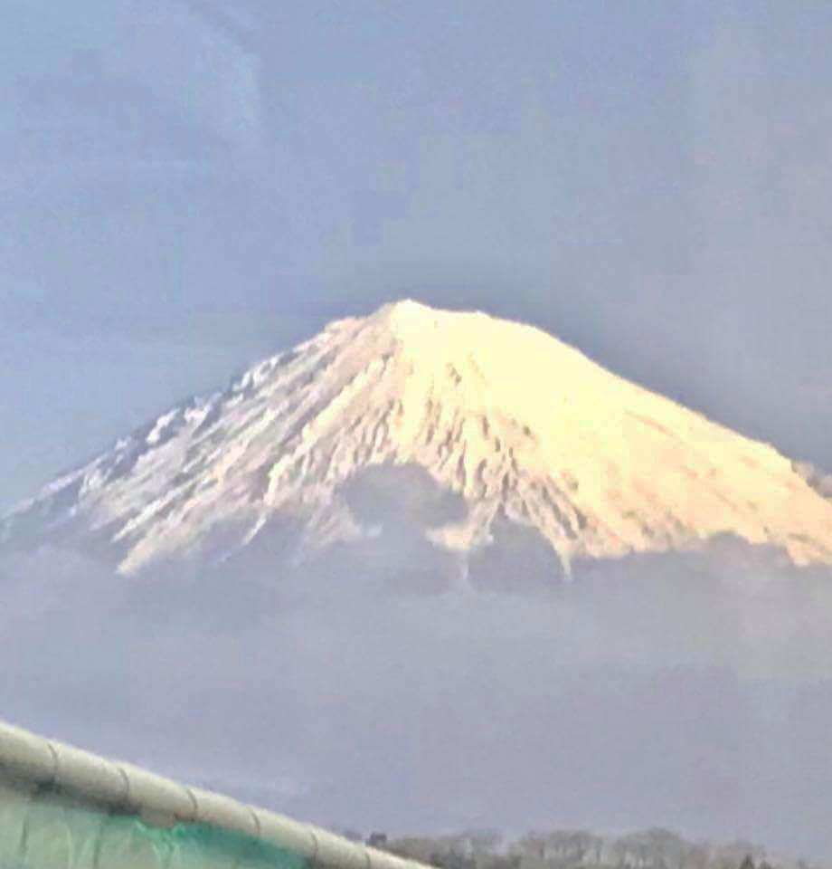 کوه فوجی در شهر یوکوهاما
