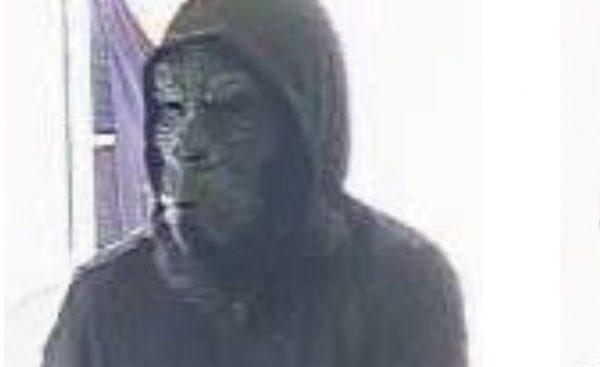 مظنون که مرد بوده، با پوشیدن  ماسک گوریل و در دست داشتن اسلحه وارد بانک شده