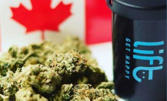 @Instagram/Lift Canada