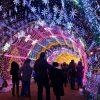 جشنواره های زمستانی نور