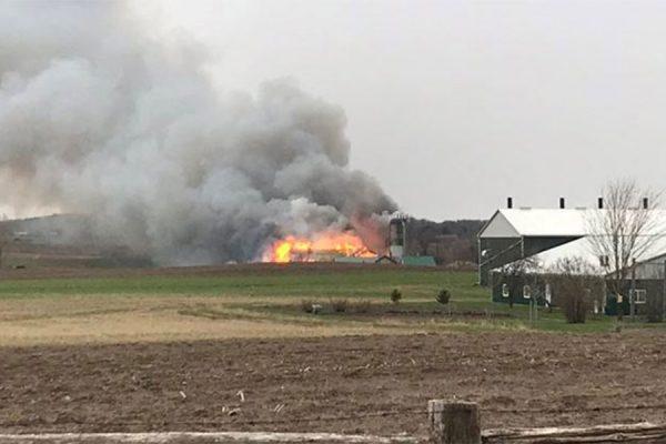 وقتی افسران پلیس و ماموران آتش نشانی رسیدند اصطبل کاملا در آتش فرو رفته بود.