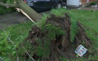 گردباد خسارات زیادی وارد کرده